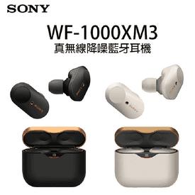 SONY WF-1000XM3 耳機