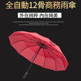12骨抗風雨折疊自動傘
