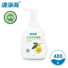 清淨海檸檬環保洗手慕斯
