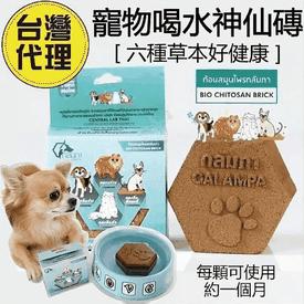 泰國寵物愛喝水神仙磚