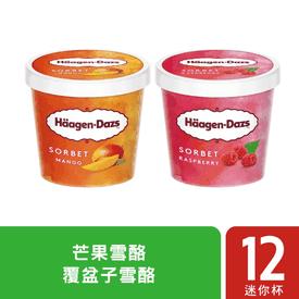 水果雪酪冰淇淋迷你杯組