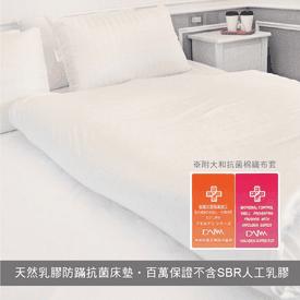 天然乳膠防蟎抗菌床墊