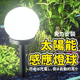 零電費太陽能感應燈球