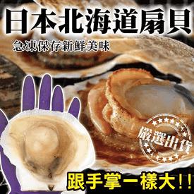 北海道手掌大半殼甜扇貝